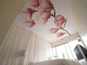 сатиновый потолок, фото, в спальне
