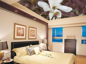 оформление потолка, в спальне, натяжной потолок, фото