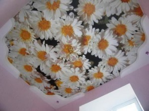 тканевый натяжной потолок, с рисунком, фото