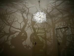 люстра на потолке, тени деревьев, лес